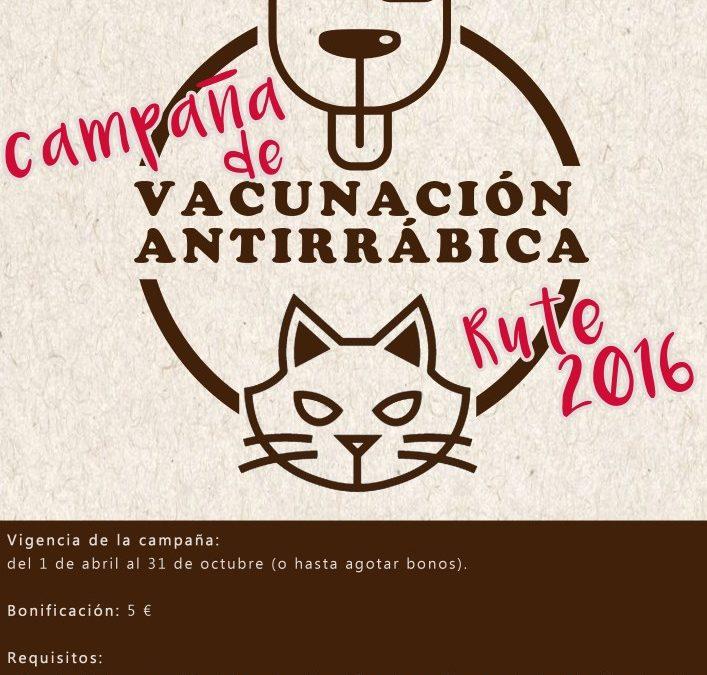 Campaña de vacunación antirrábica (2016) 1
