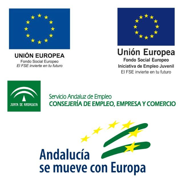 Programa de Fomento del Empleo Industrial y Medidas de Inserción Laboral en Andalucía 1