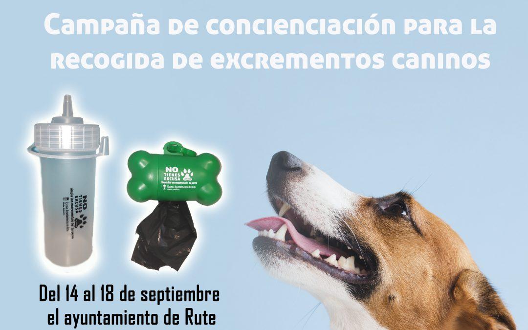Campaña de concienciación para la recogida de excrementos caninos 1